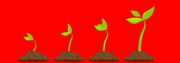 Doorgroeien, hoe doe je dat en hoe maak je het mogelijk?